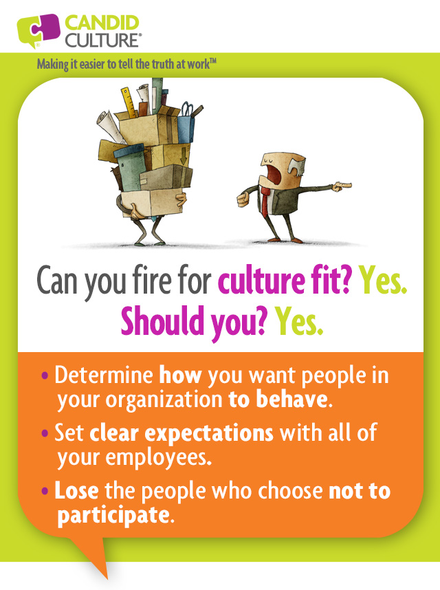 cultural fit in the workplace